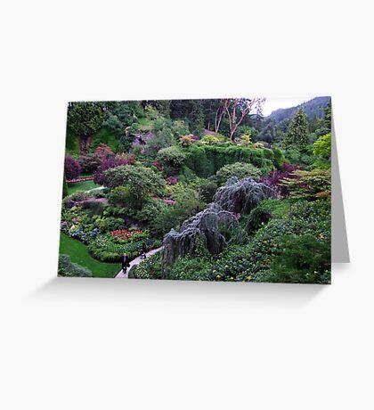 Sunken Garden No.2 Greeting Card
