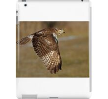 Red-tailed Hawk iPad Case/Skin