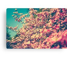 Her Favorite Color Was Pink Canvas Print