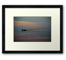Swimming in the Sky! Framed Print