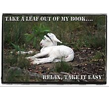 Relax, Take it easy! Photographic Print