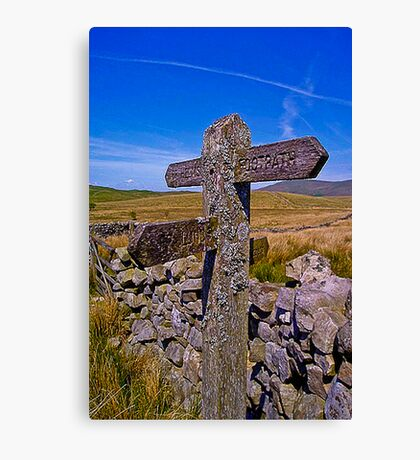 Every Which Way Canvas Print