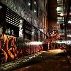 Laneway Moods. by Steve Chapple