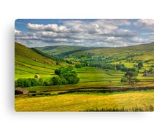 Looking Down The Dale. Metal Print
