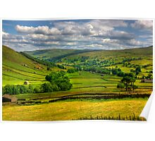 Looking Down The Dale. Poster