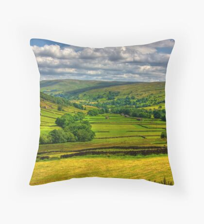Looking Down The Dale. Throw Pillow