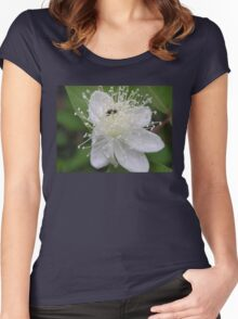 Spring Blossom  Women's Fitted Scoop T-Shirt