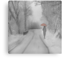 And Winter came Metal Print