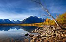 Saint Mary's Lake in Fall. Glacier National Park. Montana. USA by PhotosEcosse