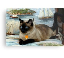 Bella, my little Princess ~ Olympia, Washington Metal Print