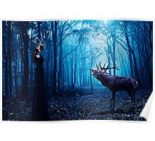 Forest Meeting Fine Art Print Poster