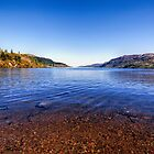 The Shores of Loch Ness by Lynn Bolt
