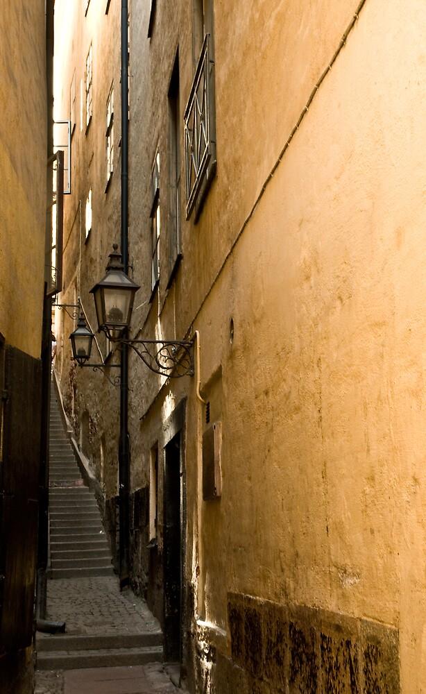 Stairway by Ilva Beretta