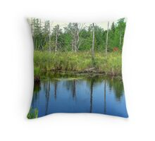 Late summer pond in a marsh Throw Pillow