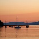 Sunset in Bantry bay by viaterra-photos