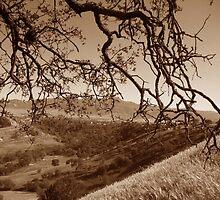 Sacred Valley by Rosalee Lustig