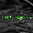 Paint The Rain by AlexGoulet