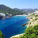 Cala Llonga Bay II by Tom Gomez