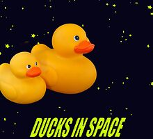 Intergalactic ducks by funkyworm