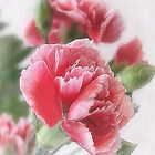 Red-Pink Carnations 1 Painterly by Christopher Johnson