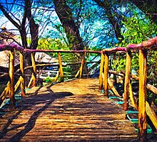 Wooden Bridge Fine Art Print by stockfineart