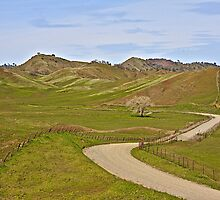 Winding Through the Foothills by John Butler