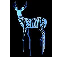 James Potter Photographic Print