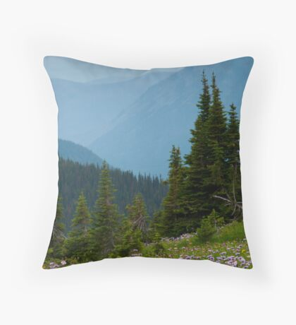 Hidden Views Throw Pillow