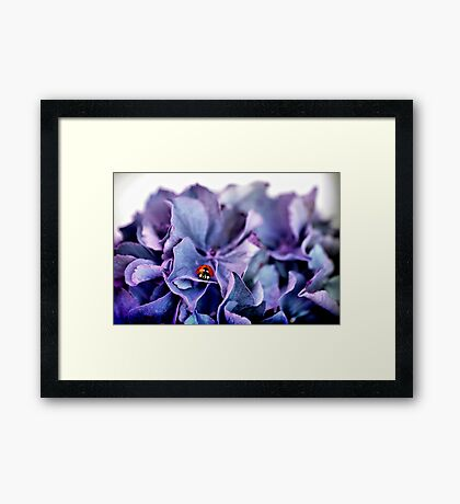 A Lady with the Blues Framed Print