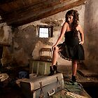 An attic full of secrets by Drew Walker