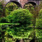 """A River Runs Through It"" by Bradley Shawn  Rabon"