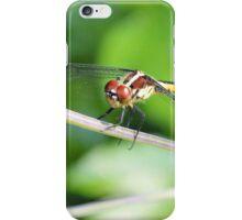 The Skimmer iPhone Case/Skin