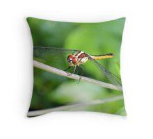 The Skimmer Throw Pillow