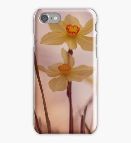 Narcissus 3 iPhone Case/Skin