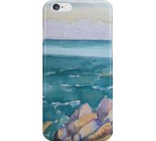 ocean view landscape iPhone Case/Skin
