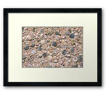 Seashell City Framed Print