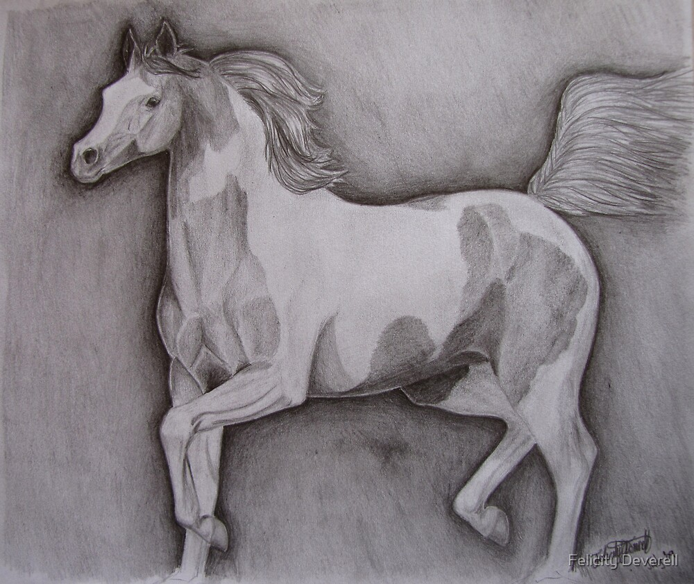 Trotting Paint by Felicity Deverell
