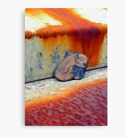 gimme shelter Canvas Print