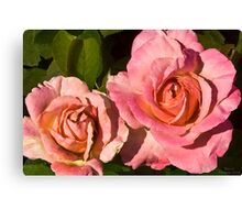 Rose Series I  / Canvas Print