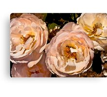 Rose Series II    /     Canvas Print