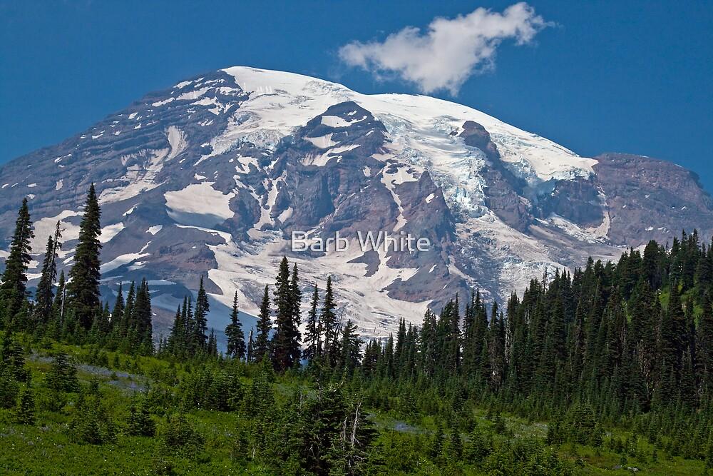 Mt. Rainier at Paradise (Washington State) by Barb White