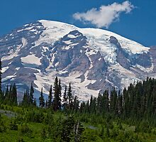 Mt. Rainier at Paradise (Washington State) by Barb White