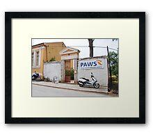 Paws clinic at Magazia, Paxos Framed Print