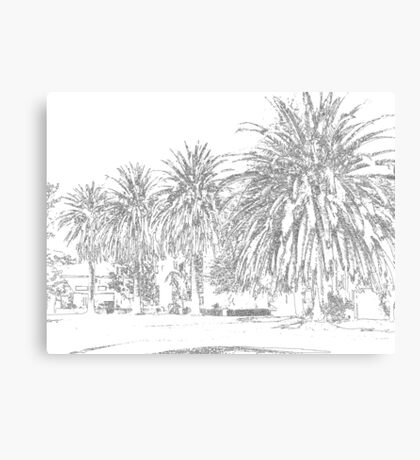 California Palms Drawn Canvas Print