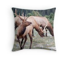The Elks Club Throw Pillow