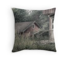 5.8.2009: Slowly Dying Countryside Throw Pillow