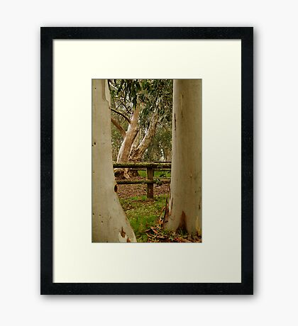Old Cattle Yard,Davies High Plains.Victorian High Country Framed Print