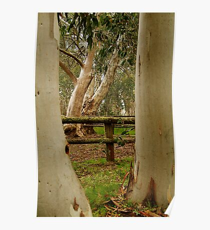 Old Cattle Yard,Davies High Plains.Victorian High Country Poster