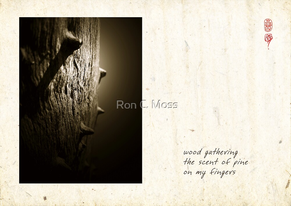 Scent Of Pine by Ron C. Moss