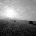 Hay Bales at Dawn by John Bromley